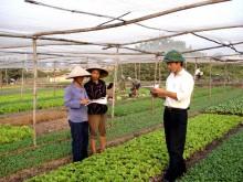 Đẩy mạnh đào tạo nghề cho nông dân