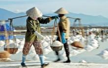 Tổng hội nông nghiệp và PTNT Việt Nam đã có buổi gặp gỡ và làm việc với đại diện của Winrock Internatinonal