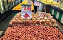 Mở đường cho trái cây vào Australia