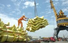 Ảnh về xuất khẩu gạo