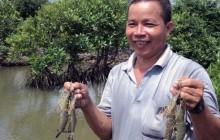 Thu nhập hàng trăm triệu mỗi năm nhờ nuôi thủy sản dưới tán rừng