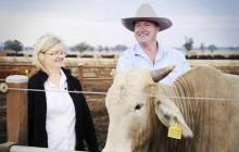 Cận cảnh ngành chăn nuôi khổng lồ của Australia