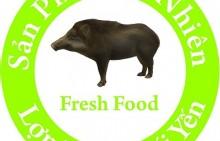 Trang trại lợn rừng suối Yến