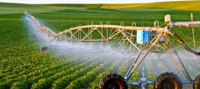 Kinh nghiệm của Israel về ứng dụng công nghệ cao trong sản xuất nông nghiệp